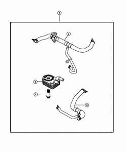 2013 Jeep Patriot Hose  Radiator Outlet  Lower  Engine