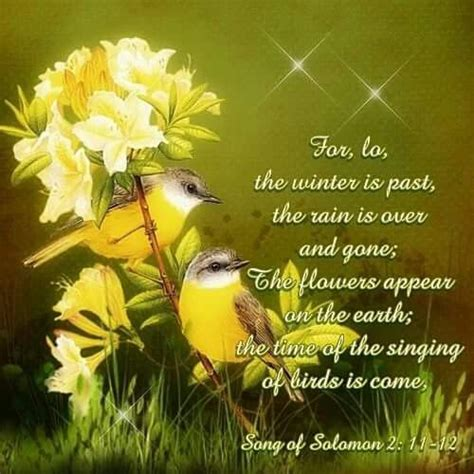 50 happy new month wishes, messages images. GOOD MORNING BIBLE VERSES KJV image quotes at relatably.com