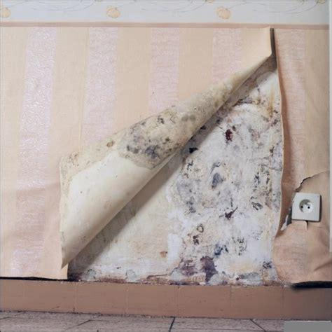 condensation sur mur interieur humidit 233 d un mur dans une chambre bricobistro