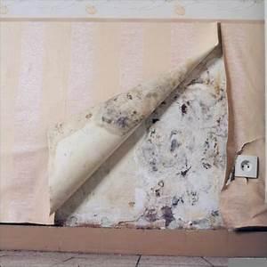humidite d39un mur dans une chambre bricobistro With probleme d humidite mur interieur