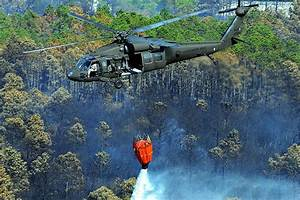 Military Photos Bambi Bucket
