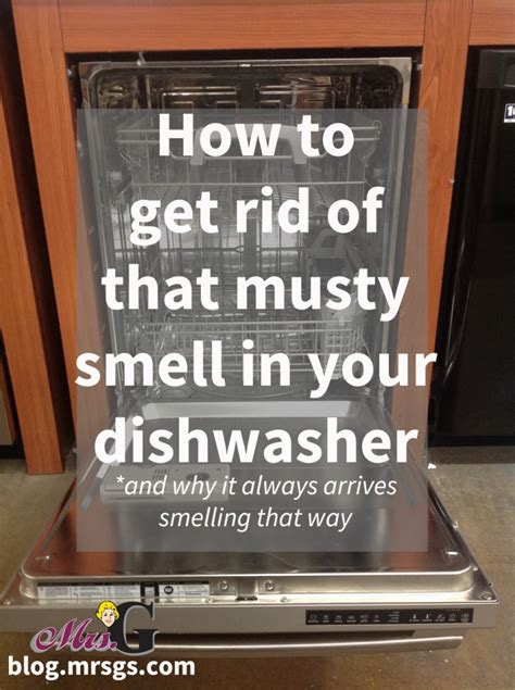 how to get rid of musty smell in kitchen cabinets how to get rid of that musty smell in your dishwasher and 9959