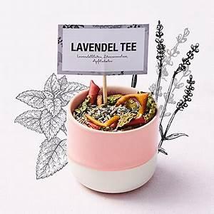 Lavendel Tee Selber Machen : rezepte f r eine entspannte tea party auf der couch fuchs gew rze ~ Frokenaadalensverden.com Haus und Dekorationen