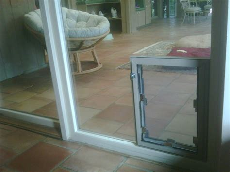 hale pet door door for sliding glass door allstateloghomes