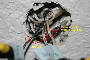 Probelm With Ceiling Fan Wire Connections