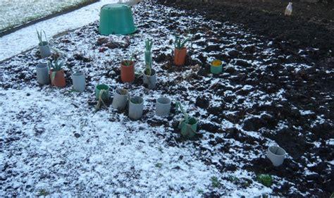 Gardeners Winter by Gardeners Tips