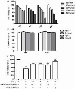 Protective Effect Of Salidroside On H2o2 Induced