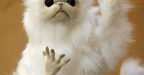 Persian Cat Meme - persian cat room guardian by anyaboz on etsy 60 00 inspiring costuming and accessories