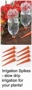 Tröpfchenbewässerung Selber Bauen : bequem regulierte bew sserung mit hilfe von pet flaschen ~ Lizthompson.info Haus und Dekorationen