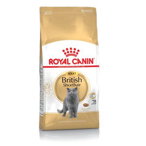 royal canin kitten shorthair shop cats balanced nutrition treats royal