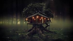 Tree, House, Dark, Wallpapers