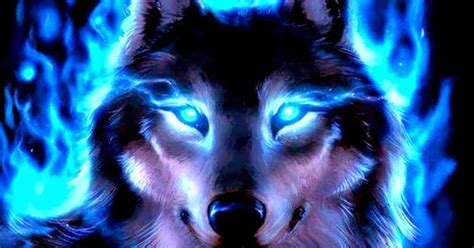 Cool Wolf Backgrounds Cool Wolves Backgrounds Wallpaper Free Hd Wallpapers