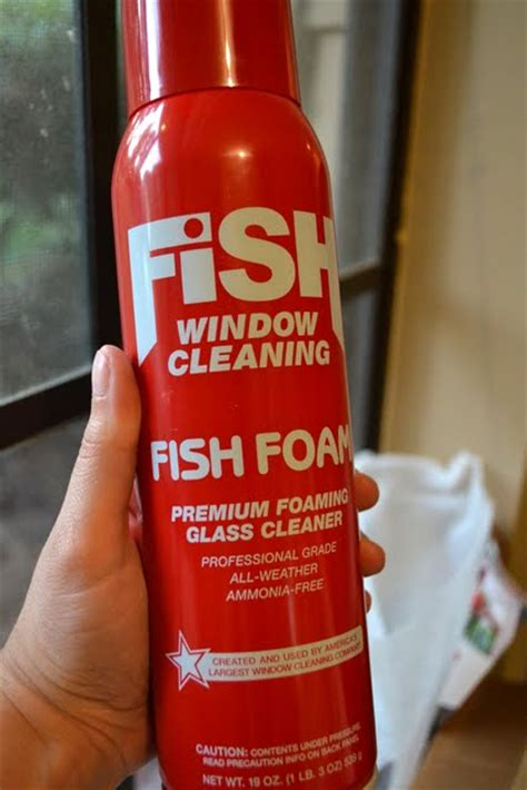 fish foam window cleaner review giveaway ugly
