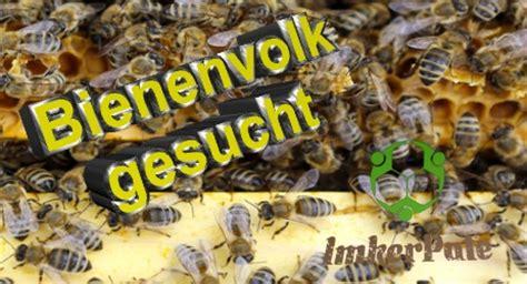 bienenvolk kaufen bienenvolk gesucht