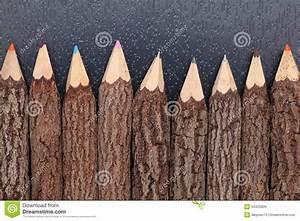 Achat Tronc Arbre Decoratif : crayons de tronc d 39 arbre images libres de droits image ~ Zukunftsfamilie.com Idées de Décoration