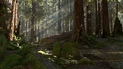 Endor Wars Battlefront Star Planets Wallpapersafari 1080p