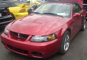 File:'99-'01 Ford SVT Cobra Mustang (Sterling Ford).JPG - Wikimedia Commons