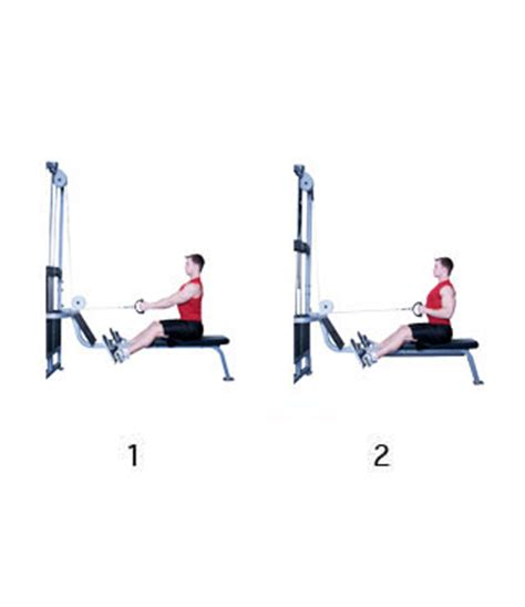 Roeien Afvallen by Cable Seated Low Row Fitness Oefeningen Rug