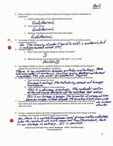 Ecological Relationships Pogil Worksheet Answers