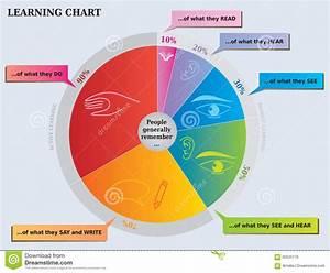 Apprenant Le Graphique Circulaire
