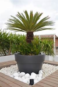 plaques de schiste espace vegetalise sec sur terrasse en With idee deco exterieur jardin 4 idee jardin moderne decoration avec pot de fleur design