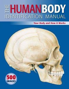The Human Body Identification Manual  Your Body And How It