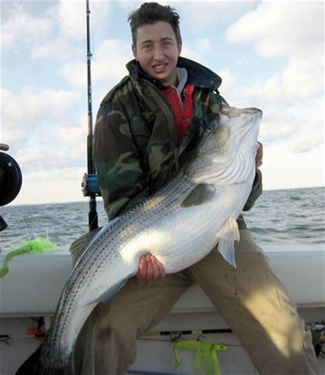 Maryland Rockfish