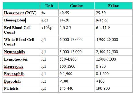 blood test lymphocytes normal range nfcfa forest cat fanciers association www forestcats net