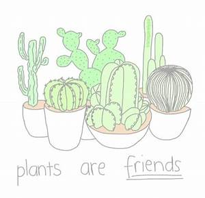 cacti drawing   Tumblr