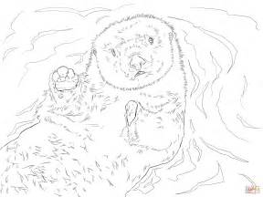 The Gallery For Baby Turtle Coloring Pages For Kids