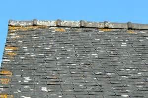 Renovation Toiture Fibro Ciment Amiante : avis sur toiture ardoise fibro ~ Nature-et-papiers.com Idées de Décoration