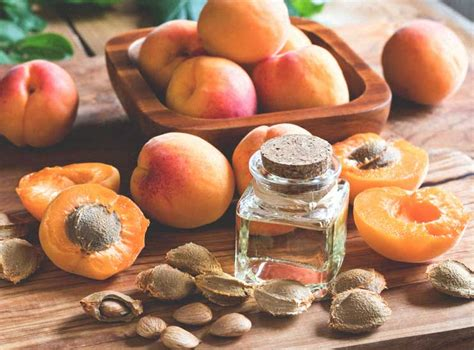 Apricot Seeds for Cancer: Effective or Not?
