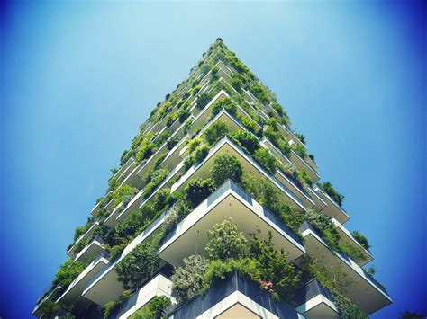 Tree-covered skyscraper is world's best tall building
