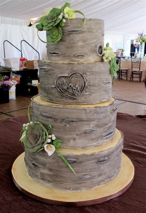 12 Best Images About Birch Tree Cakes On Pinterest Trees