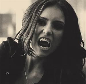 the vampires diaries on Tumblr