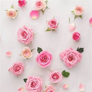 The 4 Different Types of Roses for Wedding Bouquets ...