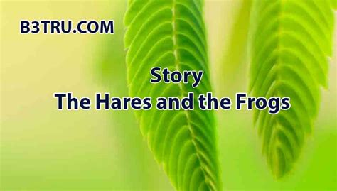 write  story   hares   frogs bstru story
