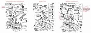 Doncarbone U0026 39 S  U0026 39 03 Oz Rally