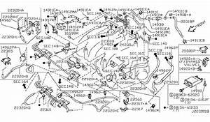 2001 Infiniti I30 Engine Hose Diagram  U2022 Downloaddescargar Com