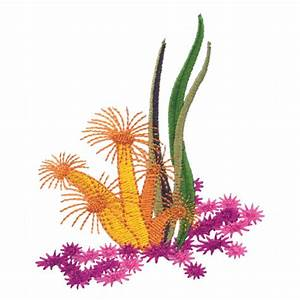Coral Reef Embroidery Designs by Amazing Designs on a ...