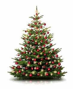 Weihnachtsbaum Entsorgen Berlin : aktionen weihnachtsbaum partyausstatter24 ~ Lizthompson.info Haus und Dekorationen