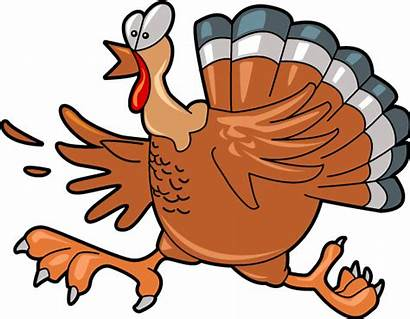 Turkey Thanksgiving Clipart Cartoon Cooked Clip Pumpkin
