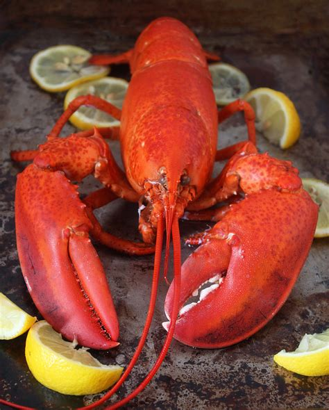 how to boil lobster 3 ways to cook lobster impress dad this weekend the new potato