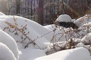 Wann Fällt Der Erste Schnee : winteranfang wann ist winter ~ Lizthompson.info Haus und Dekorationen