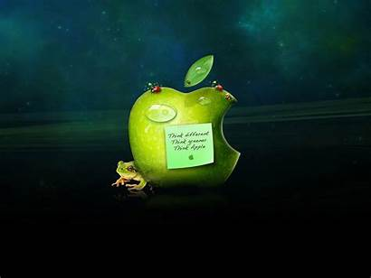 Apple Different Wallpapers Background