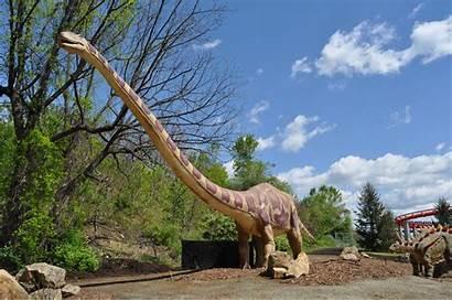 Alive Wallpapers Dinosaurs Dinosaur Park Dorney Wallpapersafari