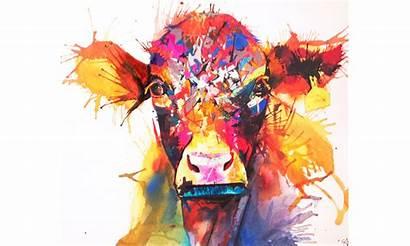 Sarah Taylor Cow
