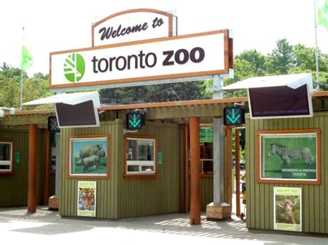 Take a Glimpse of Wildlife with Toronto Zoo, Canada