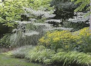 les 25 meilleures idees de la categorie jardin ombrage sur With idee de massif de jardin 3 mon jardin en automne suite