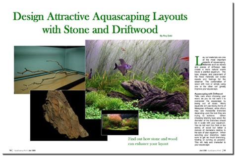 aquascaping with driftwood aquascaping world magazine design attractive aquascaping